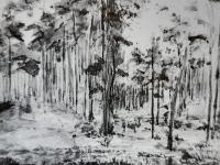Łącki las / źródło: Helena Jawniszko 1866-1935 malarstwo i rysunek. Płock 1993